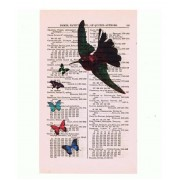 VINTAGE HUMMINGBIRD PRINT