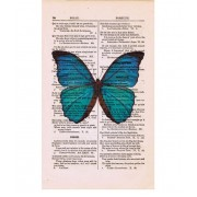 VINTAGE BLUE BUTTERFLY PRINT